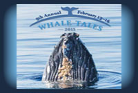 Whale Tales 2017